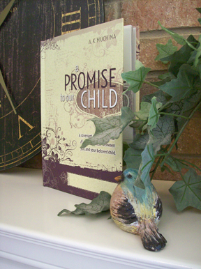 A Promise to Our Child book cover